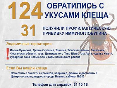 В Бишкеке зарегистрировано 124 обращения с укусом клеща